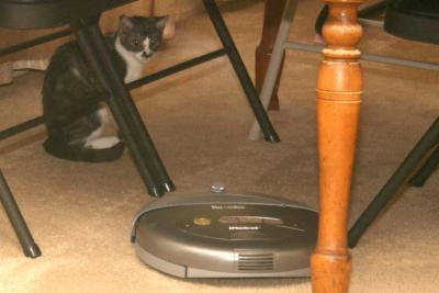 Tony and Roomba
